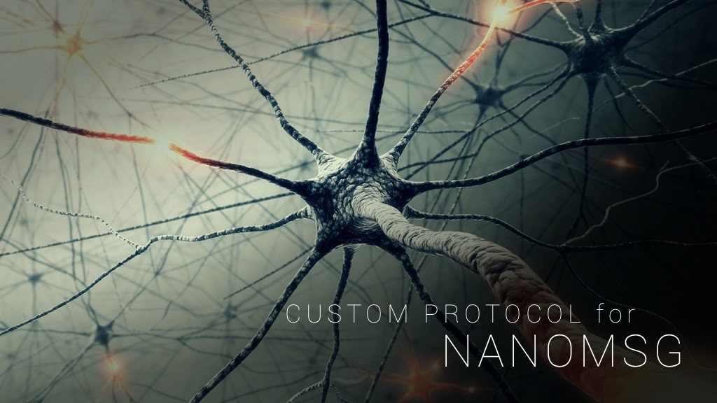 Custom protocol for nanomsg